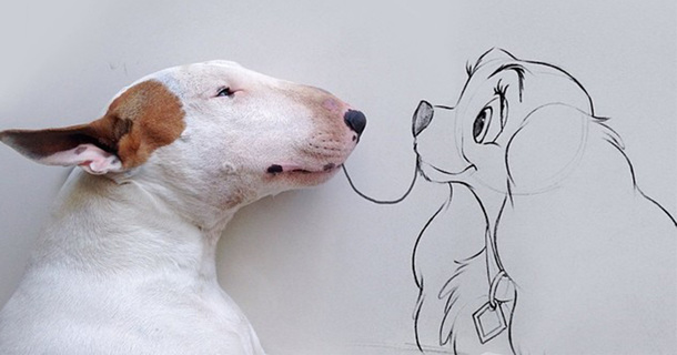 Creative Dog Owner Makes Adorable Images Of His Bull Terrier, Jimmy Choo